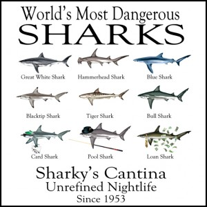10 most dangerous sharks