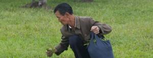 25 horrifying banned photos of North Korea