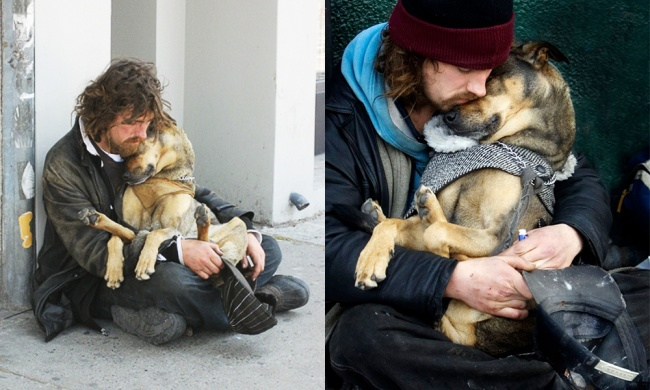 20 loyal dogs who stayed with their owners in their hour of need