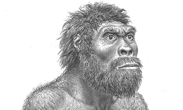 Reconstruction-of-Homo-er-009