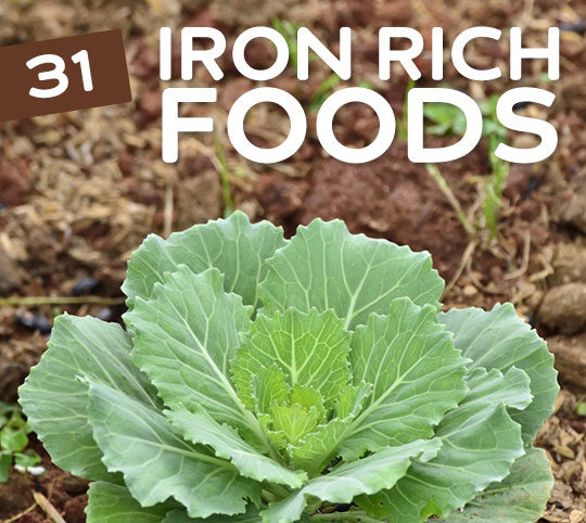 31 Iron Rich Foods for Vegetarians & Vegans - Fabweb