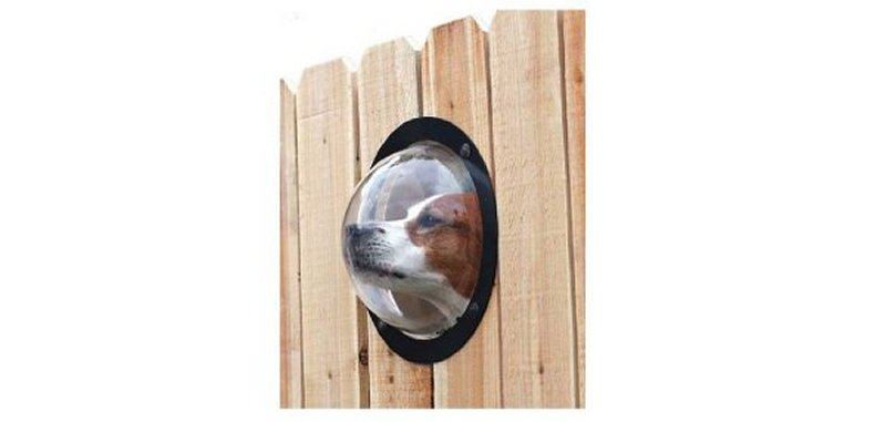 Product photo of PetPeek Fence Window for Dogs