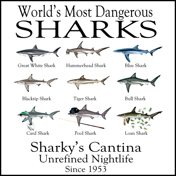 Top 10 Most Deadly Sharks to Humans