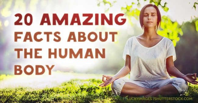 20 amazing scientific facts about the human body that we never knew