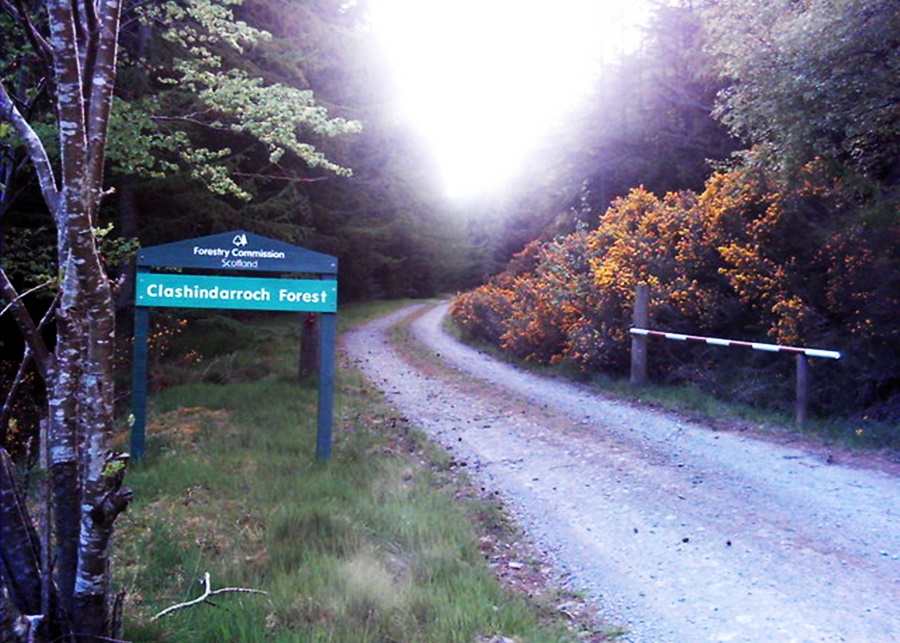 Clashindarroch beast is real and found in the Clashindarroch forest, pictured here is the entrance to the forest, a lonely road into a deep tree line, backlit by the setting sun