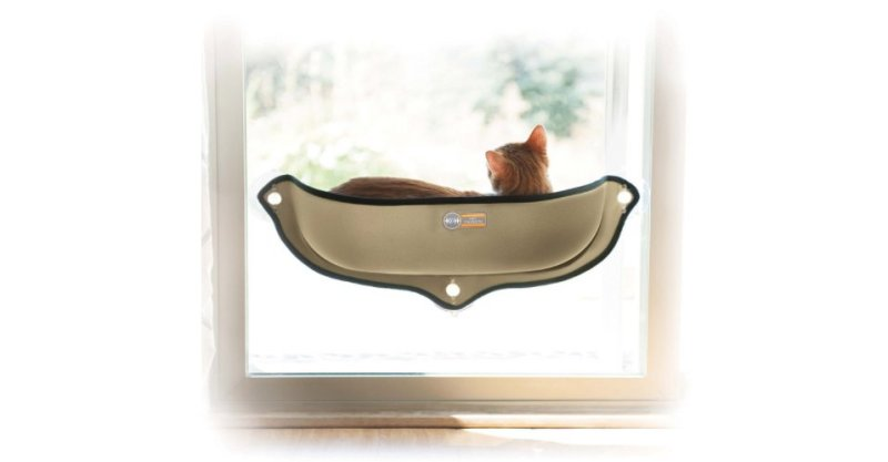 Product photo kitty sill.