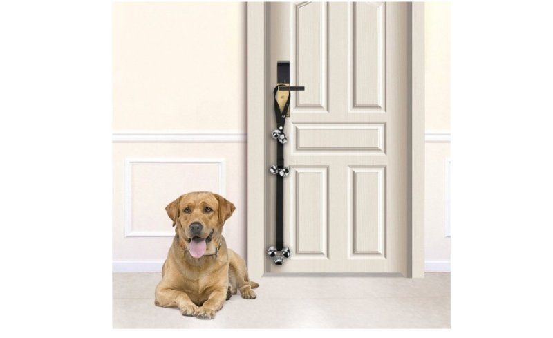 Product photo of dog doorbells.
