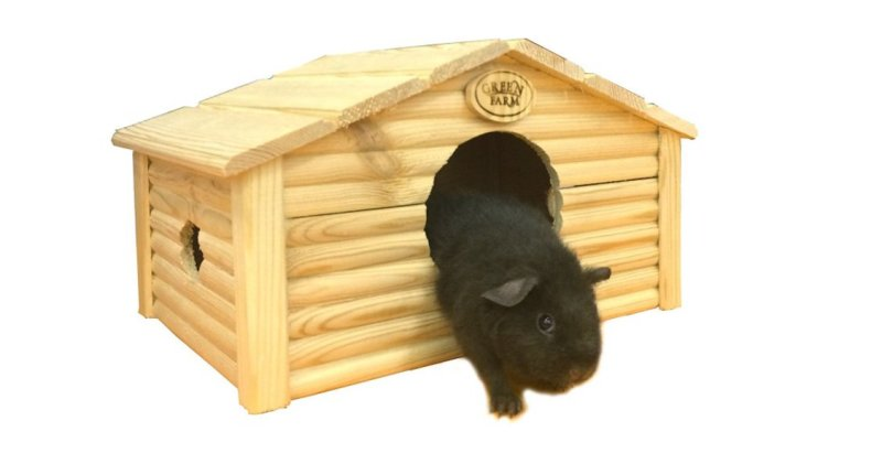 Product photo: All Wood Guinea Pig House